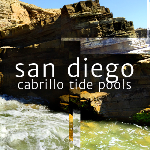 San Diego Cabrillo Tide Pools Photography