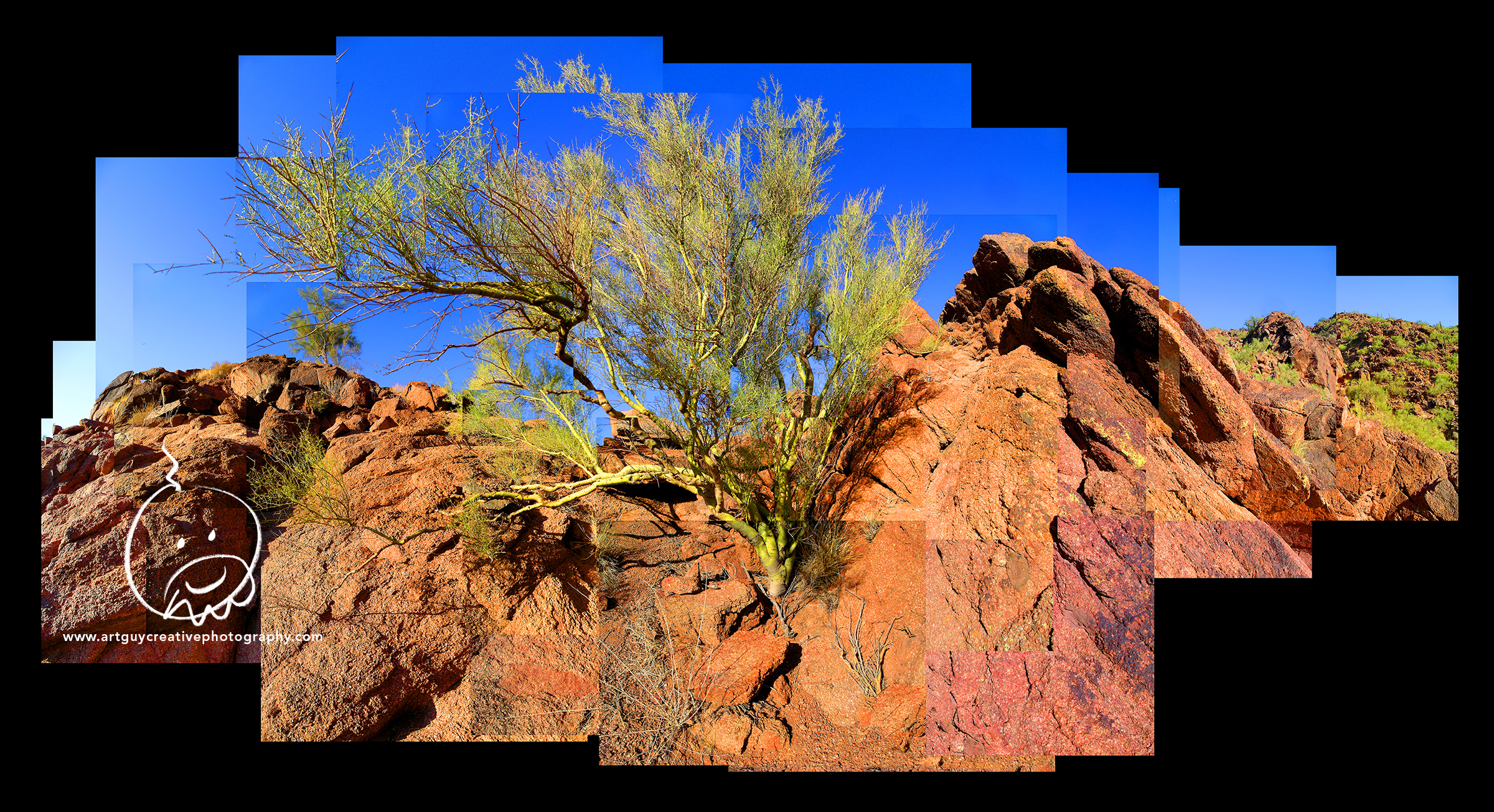 Camelback Mountain Arizona Desert Photography Tree Rocks