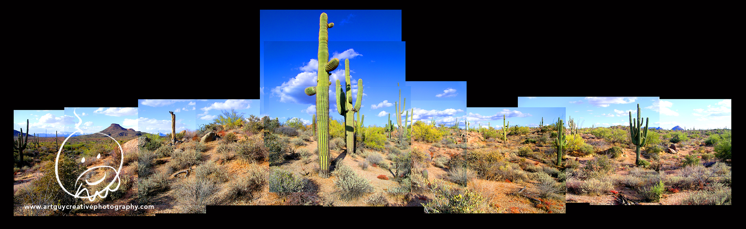 Arizona Desert Photography Desert Saguaro