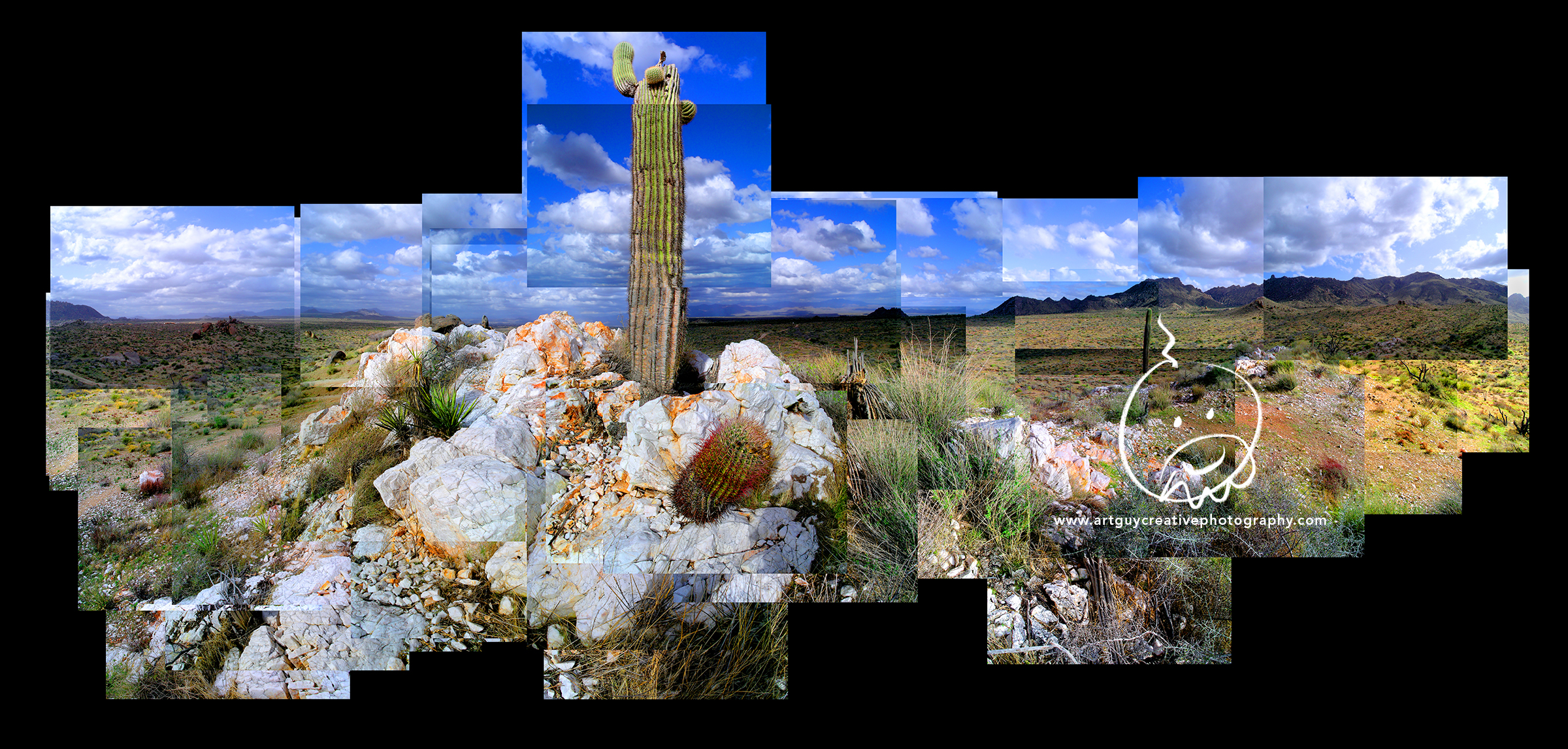 Arizona Desert Photography Rock Rooted Saguaro Cactus